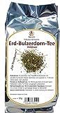 Erd-Burzeldorn - (Tribulus terrestris, Erdsternchen)