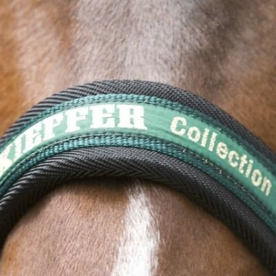 Kieffer Stallhalfter Nylon, Collection, rot, WB, messing Beschläge