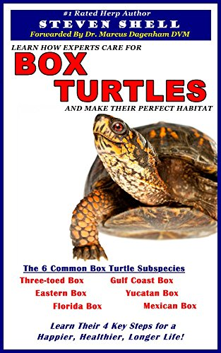 Box Turtles (English Edition)
