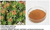 Rhodiola Rosea Extract Powder Rosenwurz (Rhodiola rosea) Extrackt Pulver