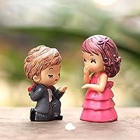 Bluelover Proposta sposa sposo Micro paesaggio decorazioni giardino Decor fai da (Groom Strumento)