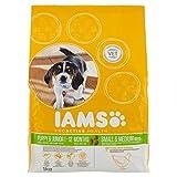 IAMS ProActive Health, Cibo Secco per Cani Cuccioli e Giovani, 1 - 12 Mesi, Taglia Piccola e Media, Gusto Pollo, 1 kg