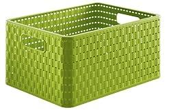 Rotho Country Aufbewahrungskiste 18 l in Rattan-Optik, Kunststoff (PP), grün, A4 / 18 Liter (36,8 x 27,8 x 19,1 cm)
