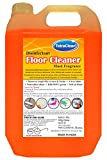 Best Odor Removers - TetraClean Premium Floor Cleaner - Advanced Disinfectant Review