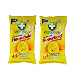 #1: Greenshield Anti Bacterial Household Wipes Pack of 2