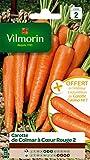 Vilmorin 3175742 Pack de Graines Carotte de Colmar à Cœur Rouge 2 + Echantillon Carotte Eskimo