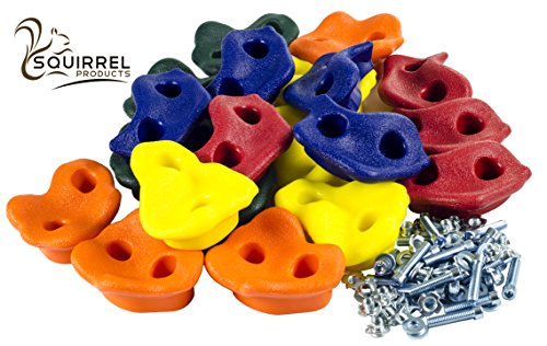 20 Assorted Rock Climbing Holds with Hardware - Jungle Gym or Swing Set Accessory