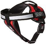 Dogline Unimax multifunktionsunterhemd Geschirr für Hunde und 2Abnehmbaren Suche und Rettung Patches, mittel, rot