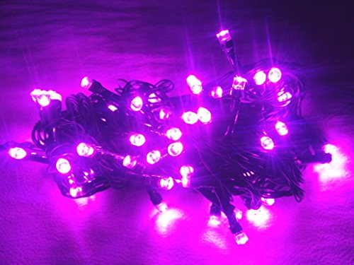 Go Hooked Purple Colored Decorative LED lights for Diwali