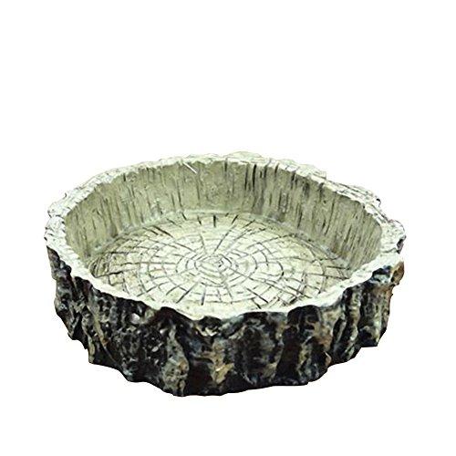 omem Reptile Natürliche Schüssel Speisen und Wasser Dish Kunstharz hergestellt