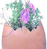 Rostikal | Edelrost Deko Osterei zum bepflanzen | schöne Dekofiguren für Ostern und Frühling 23 cm aus Metall - 3