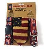 3 Pce Set Designer Patriotische USA Amerikanische Flagge Bandana Hundeleine Mittelgroß Kragen