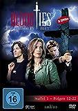 Blood Ties - Staffel 1, Folgen 12-22 [3 DVDs]