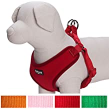 Blueberry Pet Better Basic No Pull Dog Harness Vest for Small Dogs, Rouge Red, Chest Girth 43cm-53cm, Neck 35cm, S/M, Matching Collar & Lead Available Separately