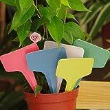 Bazaar Etiqueta de la flor etiqueta de jardinería impermeable del pvc etiqueta de plástico