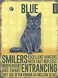 Vintage-Insegna da parete in metallo, con motivo gatto blu di Russia, in confezione regalo