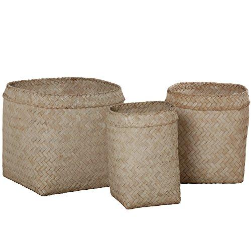 DonRegaloWeb-Set von 3Moseskörbchen Bambus geflochten in Weiß -