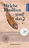 Welche Fossilien sind das? - Frank Rudolph
