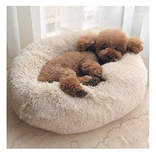 Gemütliche Plüsch (Maran Gemütlich Hundebett abziehbar und waschbar Hoher Liegekomfort durch Dicke FüllungHundesofa Hundekorb mit Hundekissen Rund oder oval Nisthöhle-Beige-70 * 70 * 20cm)