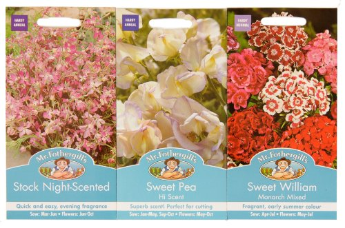mr-fothergills-seeds-scented-flowers-collection