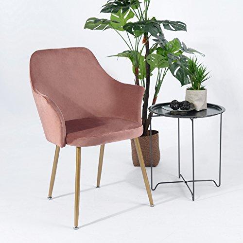 H.J WeDoo Samt Esszimmerstuhl mit Gepolstertem Rücken und Sitz, Retro Stuhl mit Armlehne und Metall Gold Beine - Stieg Rot