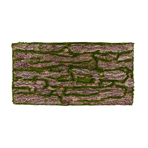 REPITERRA Terrarium Rückwand 3D Hintergrund Deko Naturlook Rinde 120x60cm