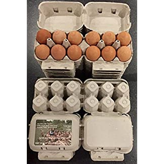 HAPPY CHICKENS 50 HALF DOZEN ECONOMY 'FLAT TOP' EGG BOXES SUITABLE FOR LABELS UP TO LRG EGGS 7