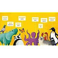 Dance-like-a-Sing-like-a-Jump-like-a-Ediz-a-colori-Con-48-Carte