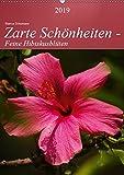 Zarte Schönheiten - Feine HibiskusblütenAT-Version (Wandkalender 2019 DIN A2 hoch): Zarte Hibiskusblüten in prachtvollen Formen und Farben (Planer, 14 Seiten ) (CALVENDO Natur)