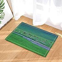 Fußmatte Rutschfeste Bodenmatte Teppich Indoor Haustür Bad Matten Teppiche