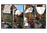 4260420089047holly Sunbrellas Holly Modell: Balcony - 360 ° drehbar - Balkon - Markisen - Ergänzungs - Fächerschirm - Bezug Polyster Natur mit hohem UV Schutz - IT : Holly Fächerschirme Video -