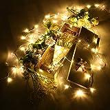 49ft 100 LED luci di Natale, 8 Modalità Impermeabile e allungabile Fata luce con Connettore 36V DC per la Decorazione Domestica