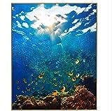 HAJKSDS Malen Nach Zahlen DIY Digitalbild Der Handzeichnung Auf Segeltuchmalereiwandkunst-Unterwasserwelt