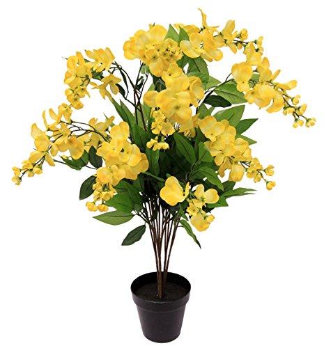 Flair Flower 151355G Goldregenbaum I.T. Polyester, Kunststoff, Gelb, 70 x 25 x 25 cm