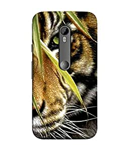 PrintVisa Designer Back Case Cover for Motorola Moto G3 :: Motorola Moto G (3rd Gen) :: Motorola Moto G3 Dual SIM (you will like this after print covers)