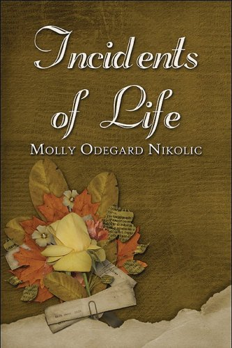 Incidents of Life Cover Image