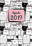 Agenda: Semainier - Petit Format A5 - Motif Chats Rose Noir Blanc - Calendrier Janvier à Décembre