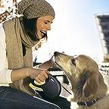 flexi Roll-Leine New Classic M Seil 5 m schwarz für Hunde bis max. 20 kg - 5