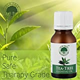 #10: Old Tree Essential Oil For Skin,Hair, Acne Care,15 Ml
