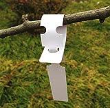 G2PLUS 200Stk. Weiß Plastik Pflanzenstecker StecketikettenBeschriften Pflanzschilder Schilder 2CM *