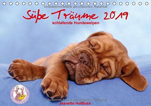 (Süße Träume 2019 - schlafende Hundewelpen (Tischkalender 2019 DIN A5 quer): träumen Sie mit... (Monatskalender, 14 Seiten ) (CALVENDO Tiere))