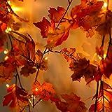 FORH Lichterkette Halloween 1.5M LED Beleuchtet Herbst Kürbis Ahorn Blätter Garland Decor ür...