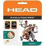 Head Evolution Pro Squash String 17L (White)