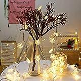 ELINKUME LED Krone Lichterkette 20LED Dekorative Beleuchtung Batteriebetrieb Stimmungslicht für Fenster Party Hochzeit Weihnachten (3M/9,84ft Warmweiß)