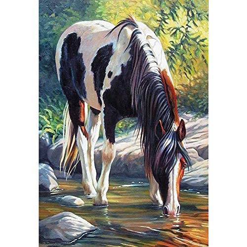 DIY 5D Diamond Painting by Number Kit for Adult,Full Drill Diamond Painting Animal Horse Lake,Embroidery Cross Stitch Arts Craft Home Wall Decoration,11.8×15.7in