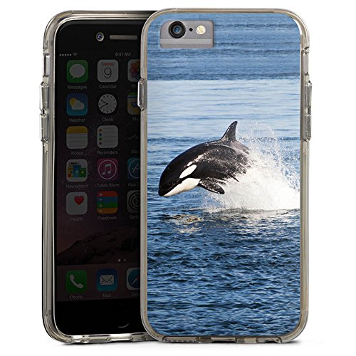 Apple iPhone 6s Plus Bumper Hülle Bumper Case Glitzer Hülle Schwertwal Orca Wal Bumper Case transparent grau