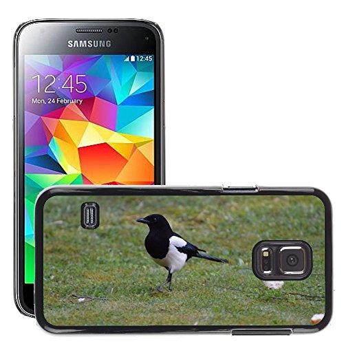 Just Phone Cover Bild Hart Handy Schwarz Schutz Case Cover Schale Etui // M00138899 Elster Vogel Feder Fly Tier // Samsung Galaxy S5 Mini SM-G800 (Fly Cover Samsung S5 Mini)