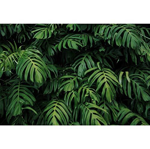 Cassisy 1,5x1m Vinyl Tropisch Fotohintergrund Modischer grüner Dschungel Palm verlässt Szene Exotischer Ton Fotoleinwand Hintergrund für Fotoshooting Fotostudio Requisiten Party Photo Booth - Exotische Vinyl