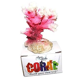 Aqua Della Cauliflower Coral Module, 10 x 6.8 x 5.5 cm 51D W4Y YgL