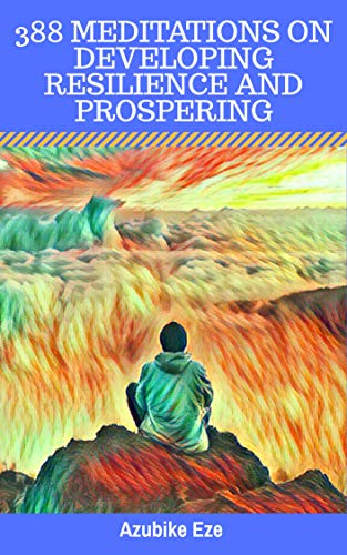 388 MEDITATIONS ON DEVELOPING RESILIENCE AND PROSPERING (English Edition)